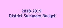 District Summary Budget