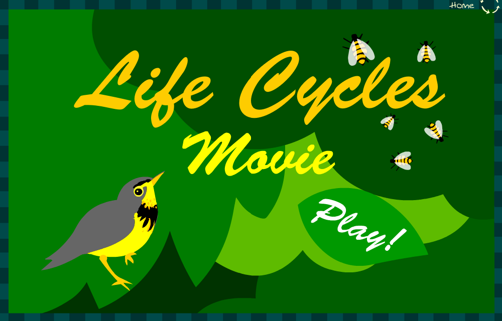 Life cycles movie