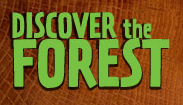 Discoverforest