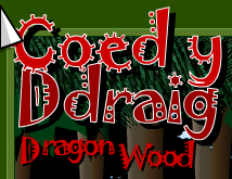 Dragon Wood