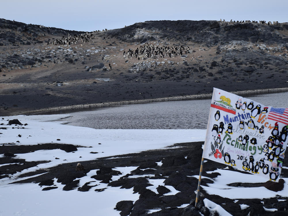 Mountain View Flag Flying on Antarctica - Courtesy of Mrs.Twomey s Class