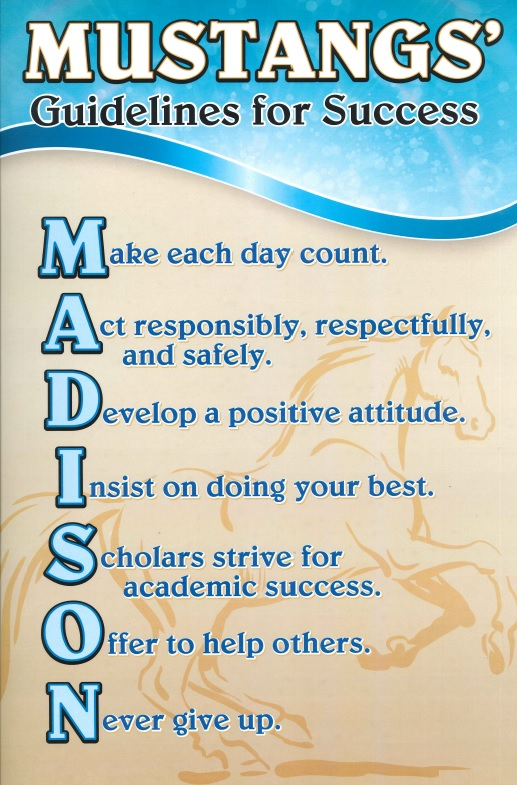 Mustang Guidelines for Success