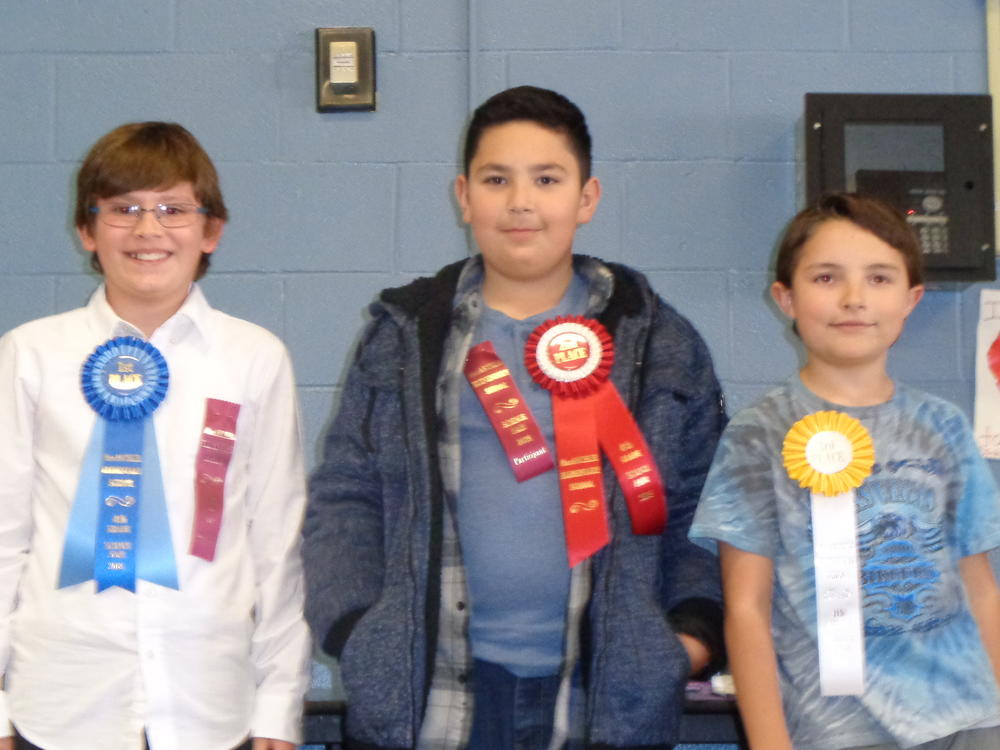3rd Grade winners--1st place--A. Ringia 2nd place--K. Manriquez 3rd place--E.  Bergh