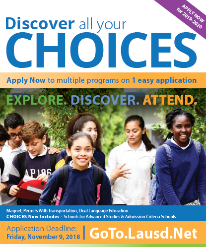 Choices Brochure