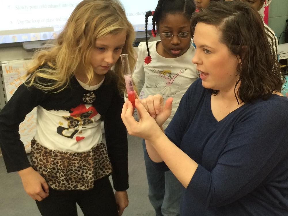 STEM: Extracting DNA from a Strawberry at Mill Creek Elementary