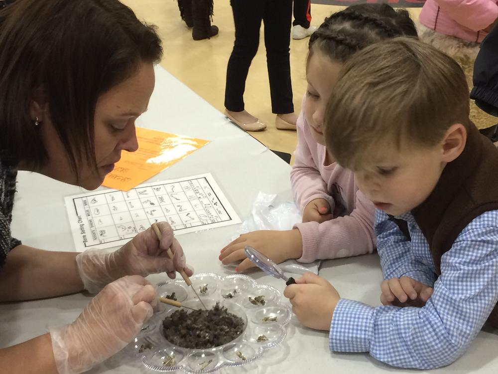 Bulloch Co Foundation Supports STEM at Sallie Zetterower with grant for  resources