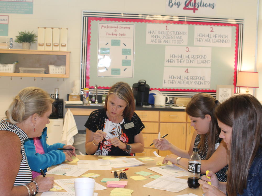 Faculty collaborate in a professional learning community