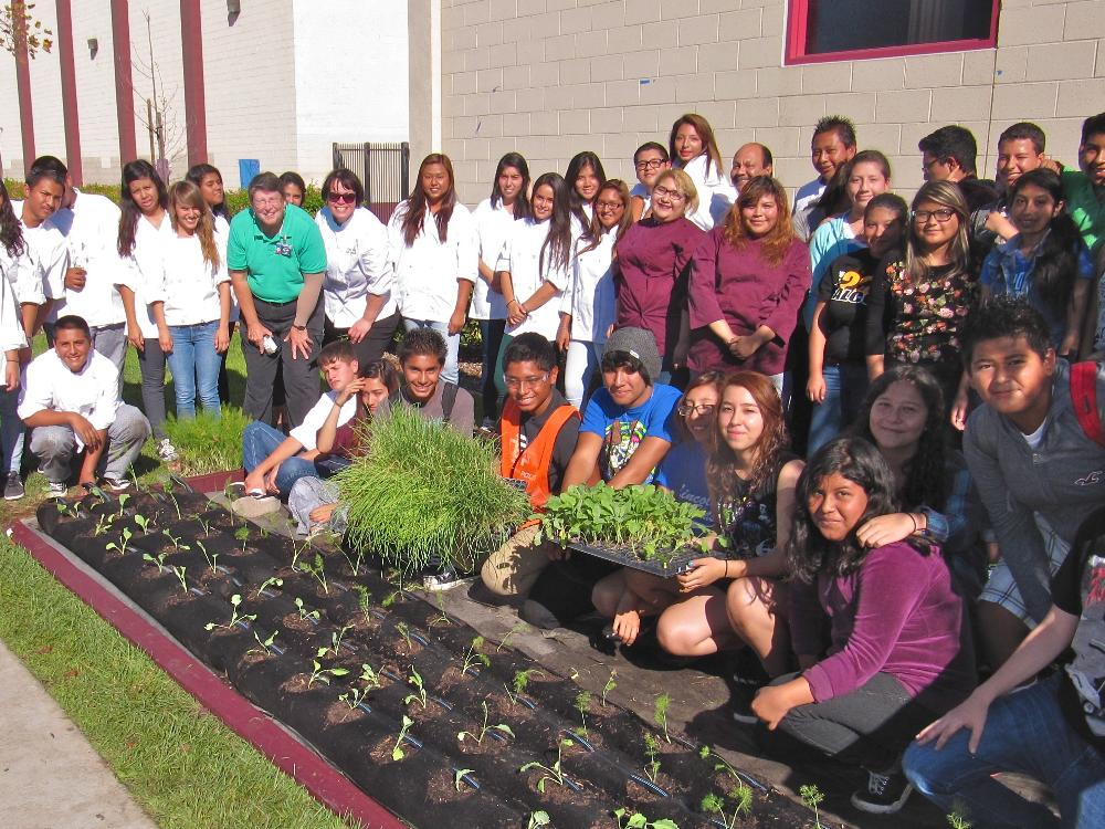 Launching the Phase 2 Grow Bed with CHOP