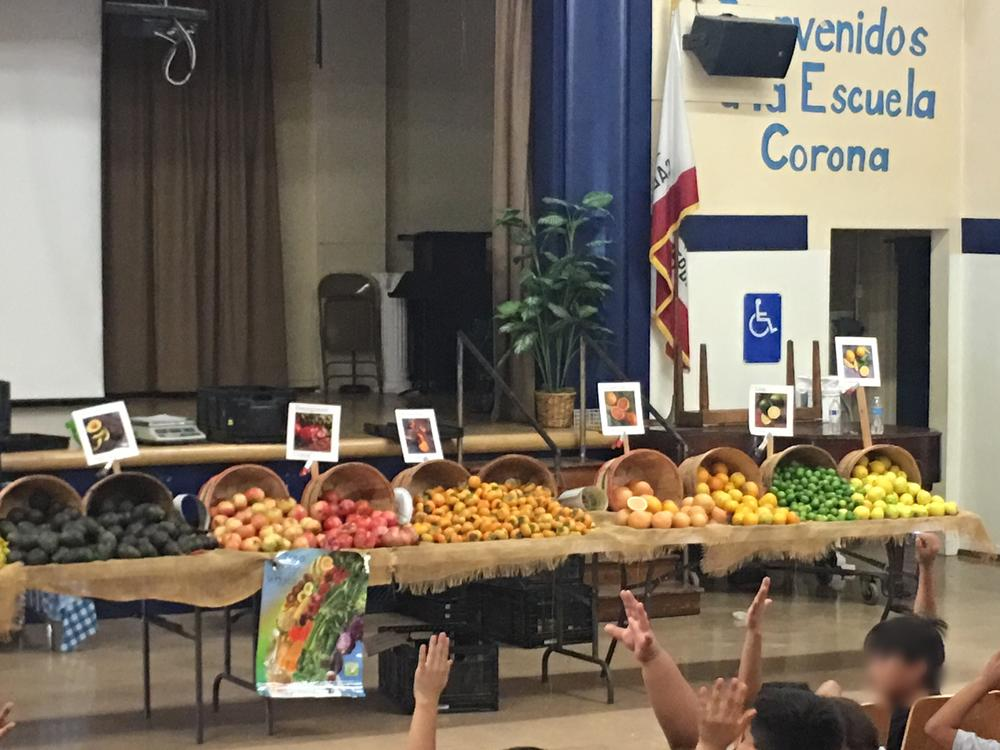 The Bring the Farmer to Your School Program is a collaboration between  Sustainable Economic Enterprises of Los Angeles SEE-LA and Los Angeles Unified  School District LAUSD that allows local farmers to deliver interactive  presentations while teaching students about local agriculture and the  importance of eating more fresh fruits and vegetables.