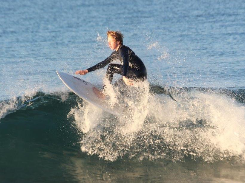 Surfers Shred