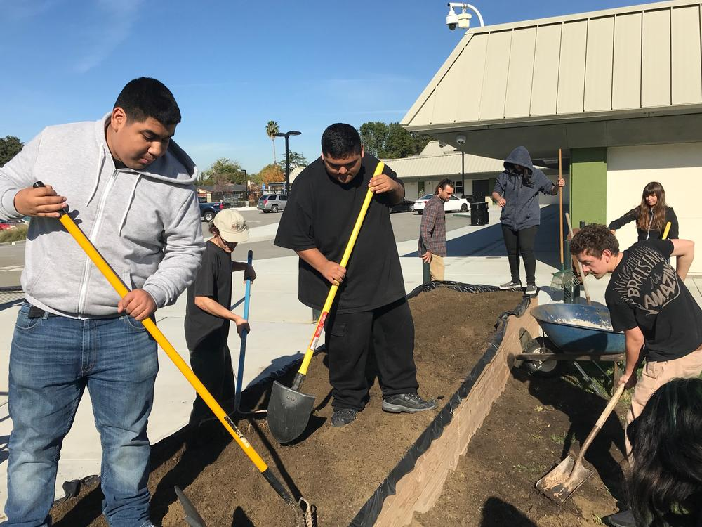 Calero students building their raised bed vegetable garden.