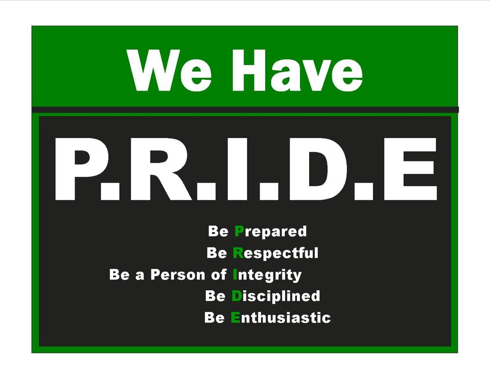 PRIDE guidelines