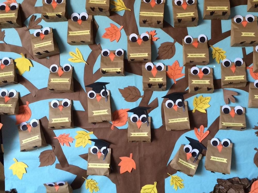 Back to School Owls 2014