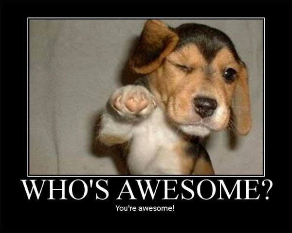 who s awesome puppy