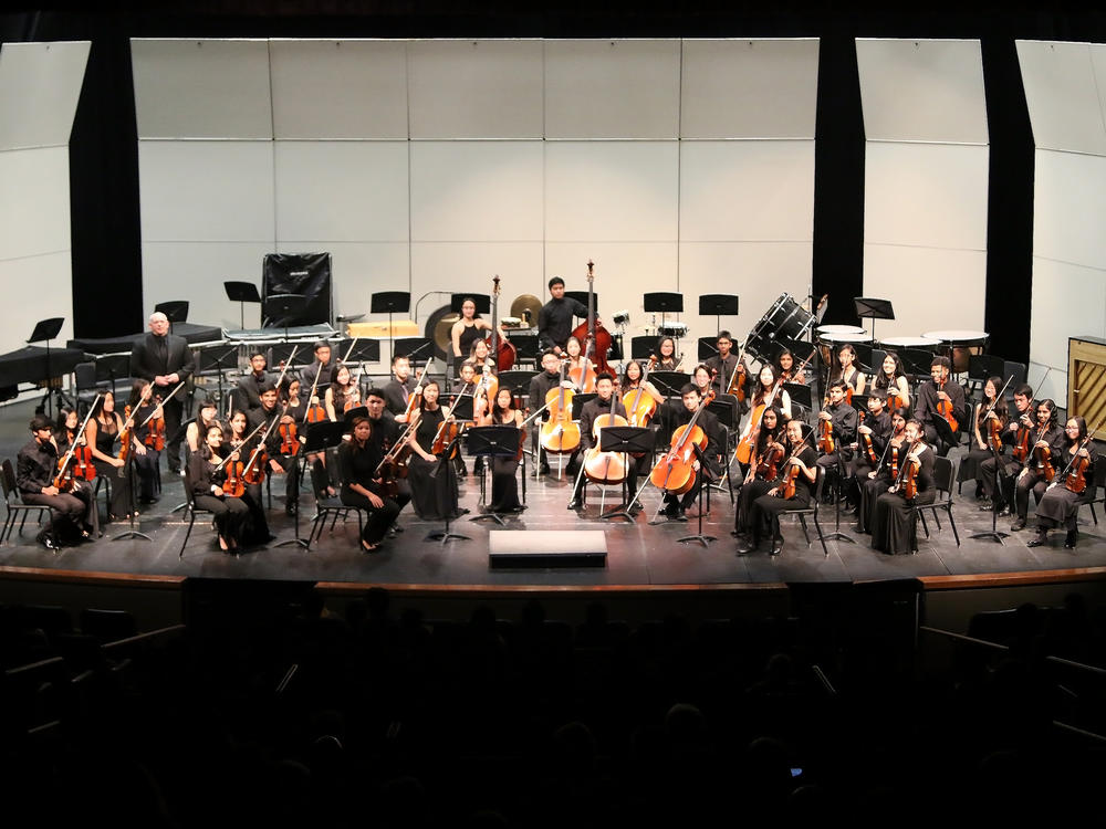 EVHS Advanced String Ensemble Performs at Fall Concert