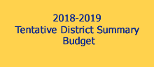 Tentative Summary Budget