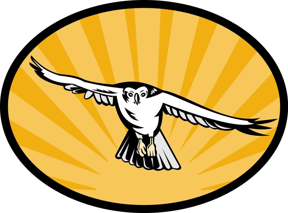Hillcrest Logo of a Hawk