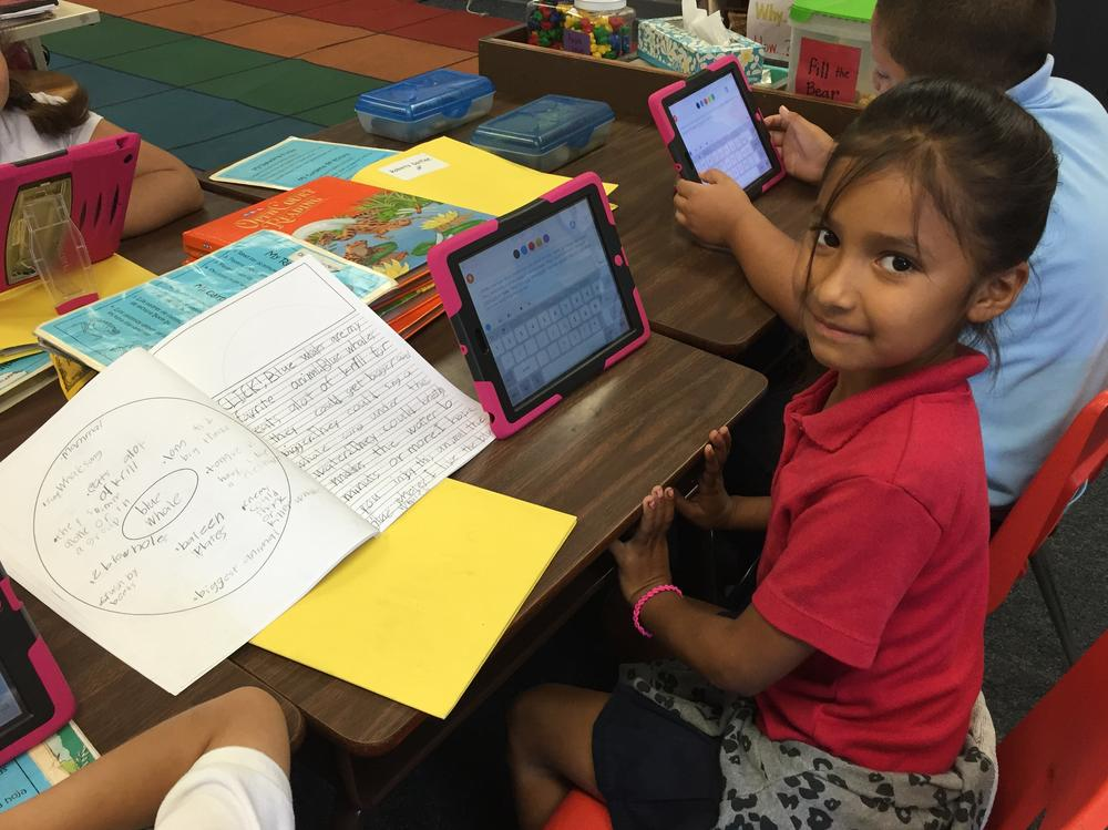Using iPads to write our animal reports.