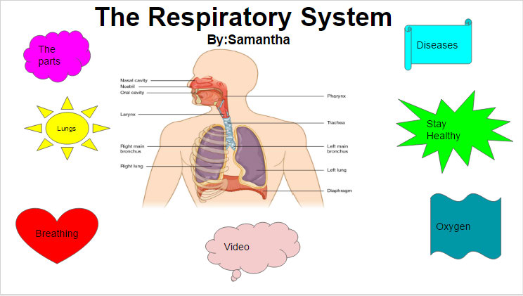 Samantha - Respiratory Game