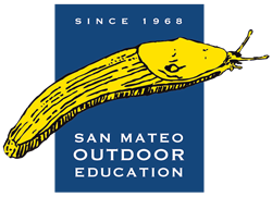 San Mateo Outdoor Ed Education Image. Banana Slug
