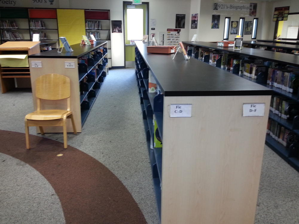 pic of fiction section 1
