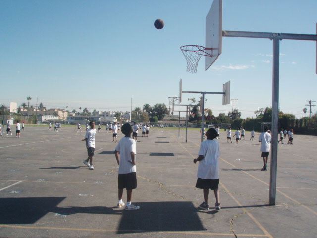 physical education field