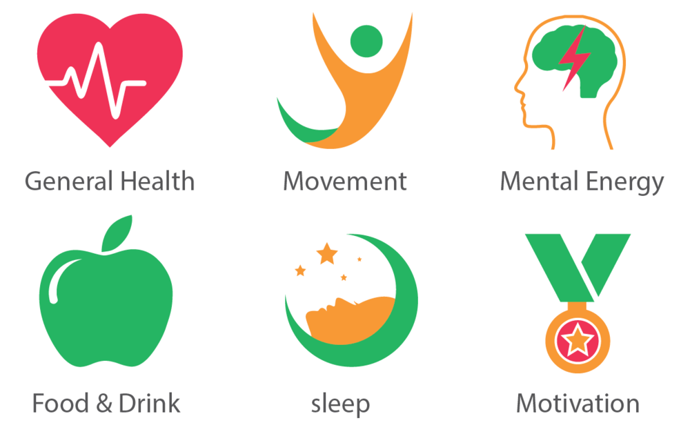 Components of health  general health, movement, mental energy, food   drink, sleep, motivation