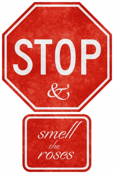grunge_road_sign__stop_smell_the_roses_sjpg3051.jpg