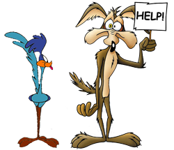 roadrunner asking for help