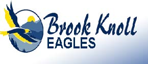 Brook Knoll eagle logo