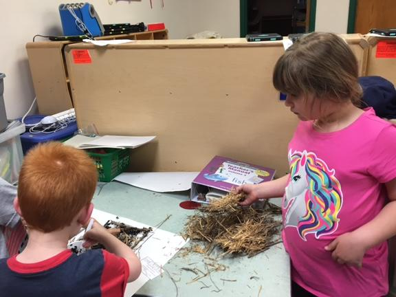 Kindergarteners worked in groups to make different kinds of birds nests.