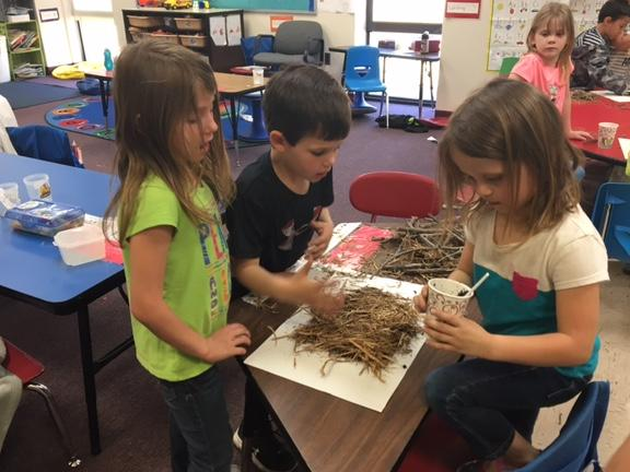 Kindergarteners have been learning about the environment and habitats.