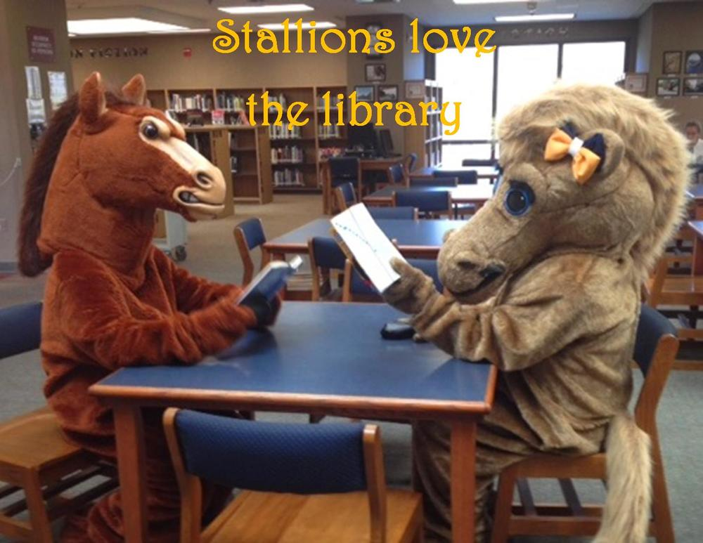 Mascots in the library