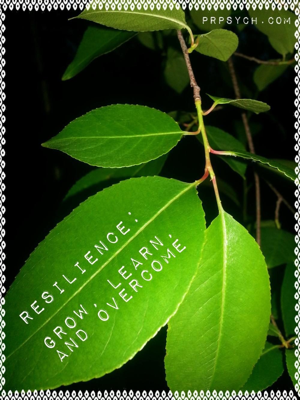 resilience  grow learn and overcome