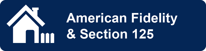 american fidelity and section 125