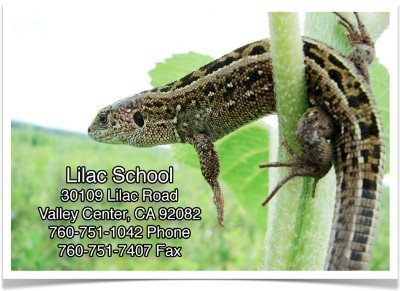 Lilac School Address Banner