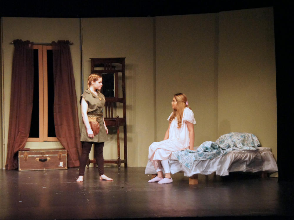 Peter Pan and Wendy 2016