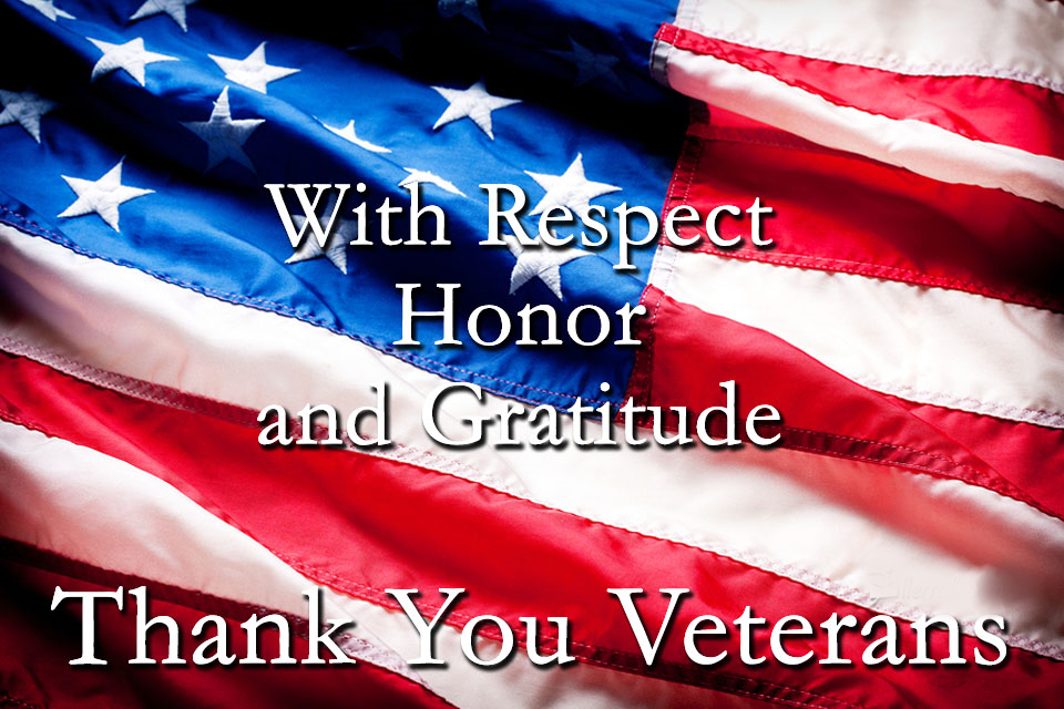 With Respect Honor and Gratitude, Thank You Veterans