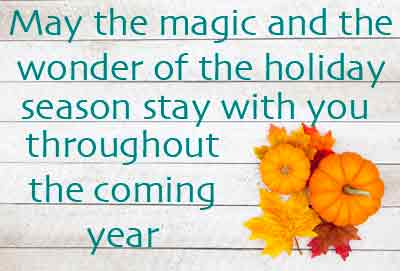 May the magic and the wonder of the holiday season stay with you throughout the coming year