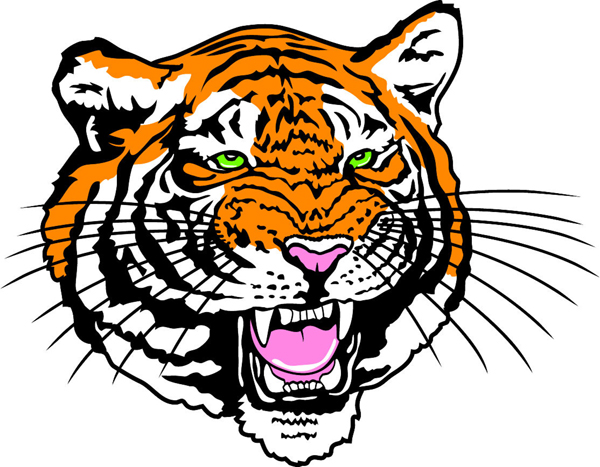 Twin Creeks Tigers