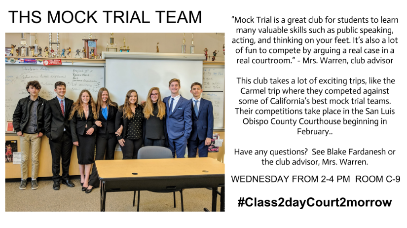 Mock Trial Team Explanation