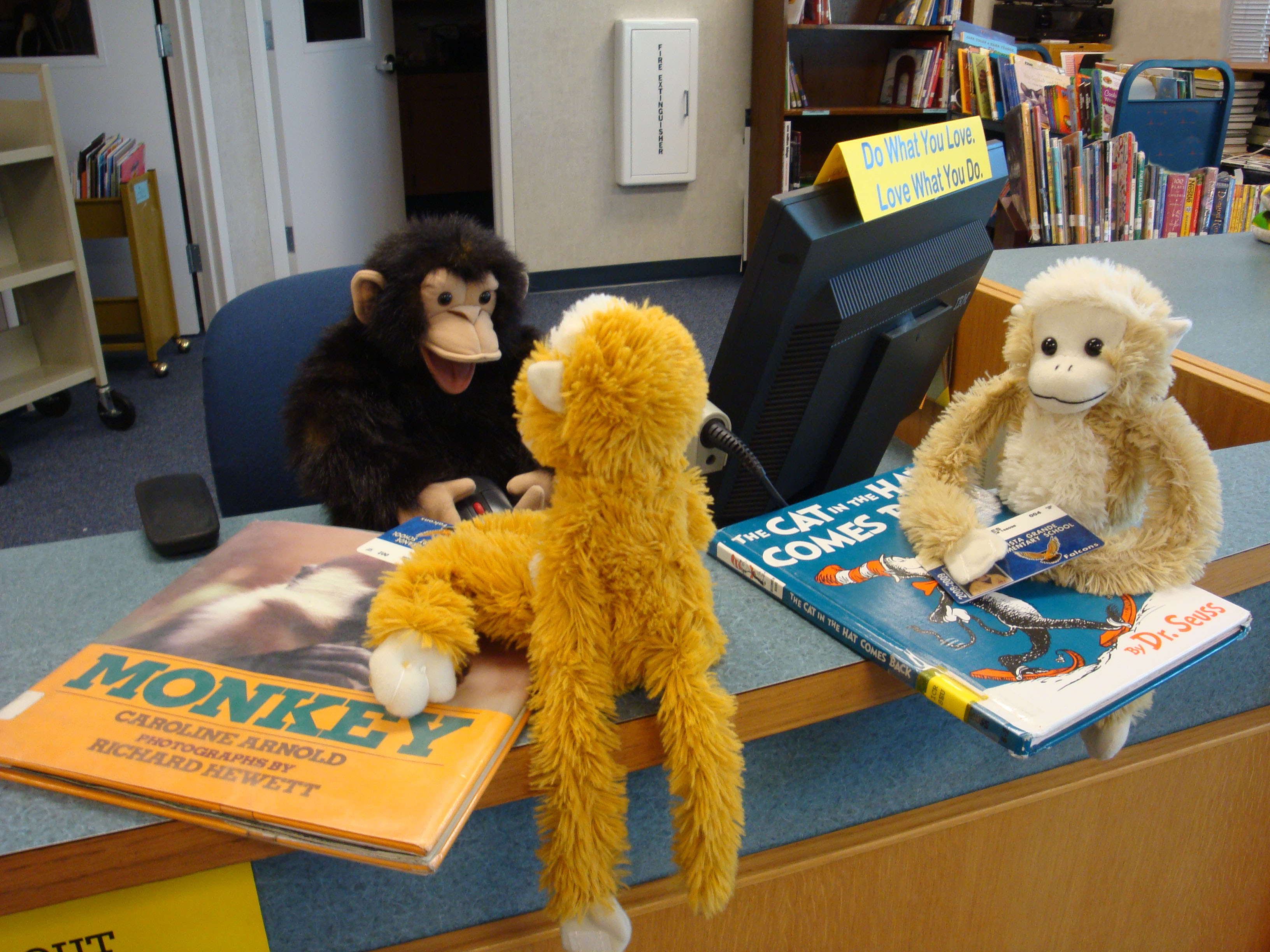 Monkeys Reading Books