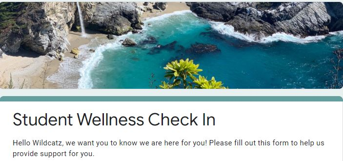 Student Wellness Check in Form