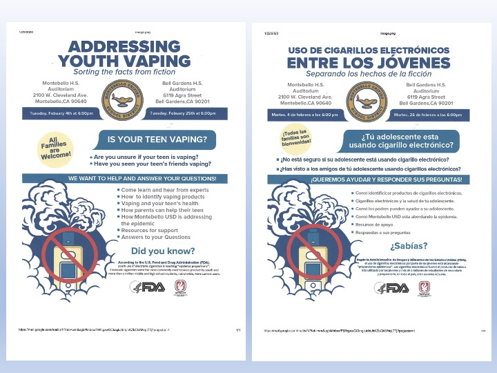 Youth Vaping Flyer