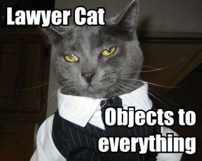 cat dressed as lawyer