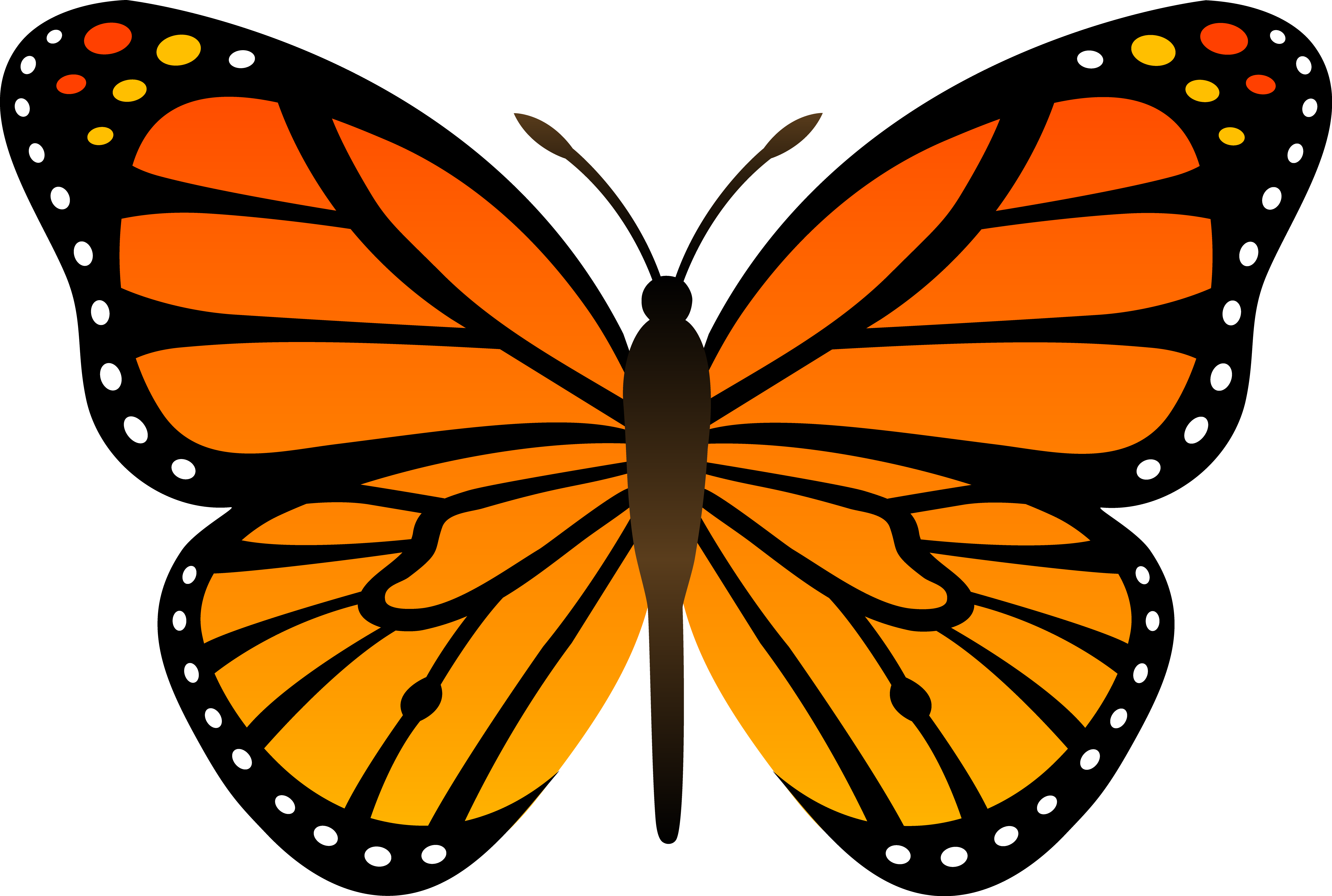 Orange-monarch-butterfly-vector-free-clip-art.png