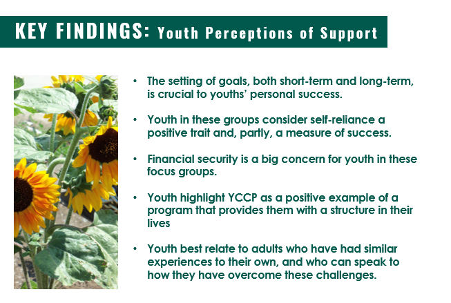 Key Findings from Youth Focus Groups