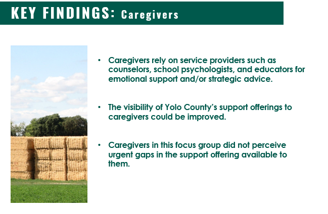 Key Findings from Caregiver Focus Groups