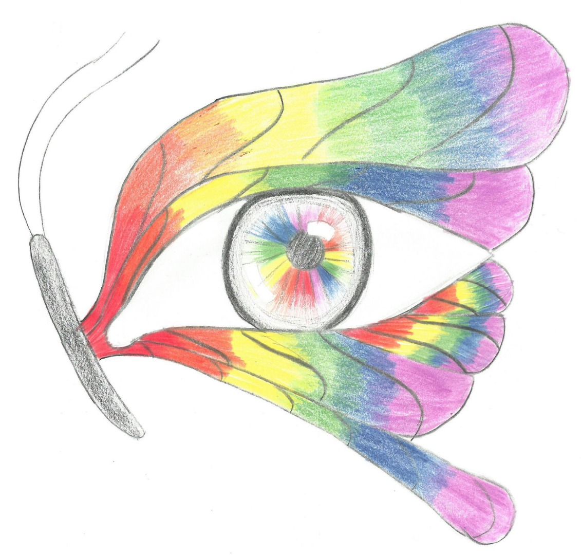 butterfly-eye artwork