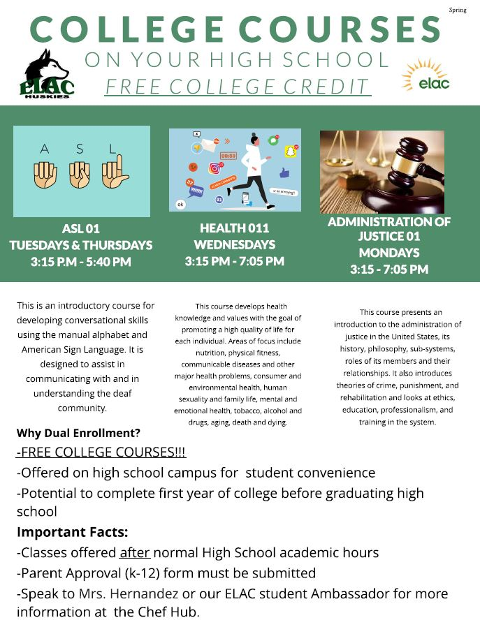 College Courses Flyer